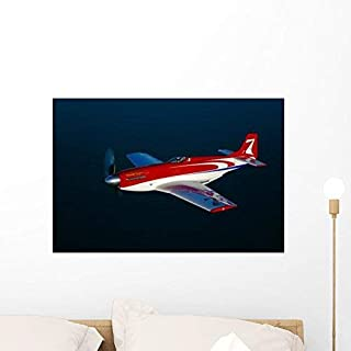 Wallmonkeys Strega Highly Modified P-51d Wall Mural by Peel and Stick Graphic (24 in W x 16 in H) WM228020 [並行輸入品]