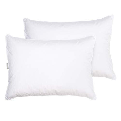 Ambesonne Goose Feather Pillow Set of 2, Breathable Down Pillows for Sleeping with Machine Washable Ergonomic Design Natural Padding for Front Back and Stomach Sleepers, 20' x 28', White