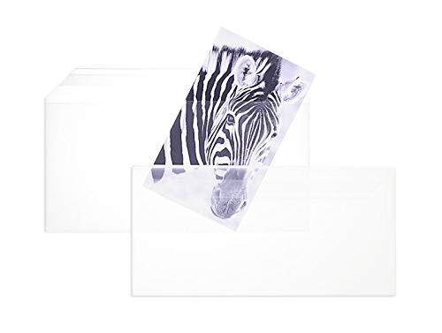Blanke Briefhüllen, Durchsichtige Folienumschläge, 100 Stück, Haftklebung, Ohne Fenster, Gerade Klappe, DIN Lang, 100 my Polypropylen, Glasklar