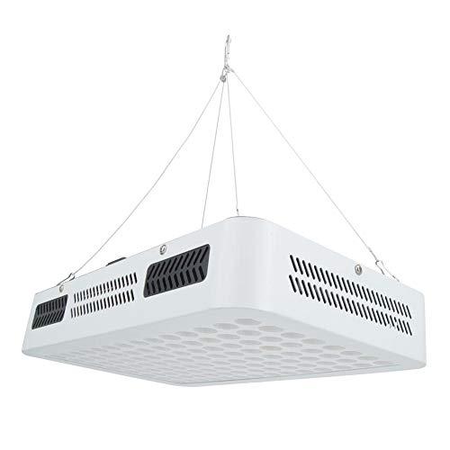 Luz LED para plantas, lámpara de crecimiento de plantas, lámpara de cultivo de luz LED para plantas de 1000 W, espectro completo para plantas de invernadero, verduras AC85-265V(EU Plug)