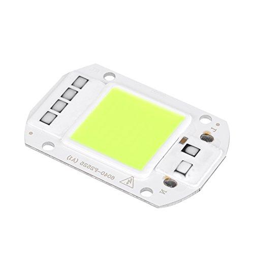 Chip LED COB 50W ha condotto le componenti dell'emettitore della luce di intensità luminosa eccellente del chip di sorgente luminosa per DIY coltiva la luce, pianta interna Veg e Bloom AC220V(Verde)