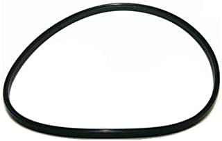 Inland Seas Nu-Clear Canister Filter Replacement O-ring