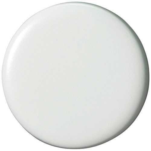 両面強力カラーマグネット30(コーティングタイプ) 白