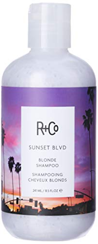 R+Co Sunset Blvd Blonde Shampoo, 8.5 Fl Oz