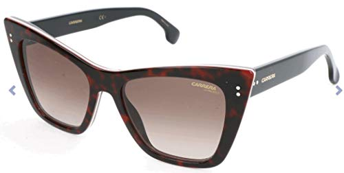 Carrera 1009/S HA 086 Gafas de sol, Marrón (Dark Havana/Bw Black Brown), 52 para Mujer