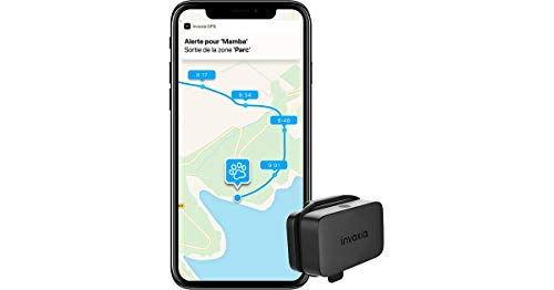 Invoxia LWT2_IVX_001_119 Localizzatore GPS per Cani e Gatti & monitoraggio delle attività - Abbonamento Incluso - Lunga autonomia - Piccolo e Leggero