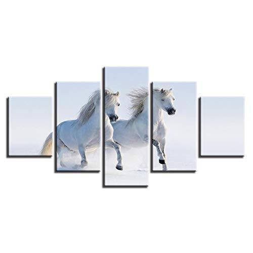 Schilderij op canvas Home Decoration White Horse muurkunst Afbeeldingen Hd gedrukt Poster No Frame 40 x 60, 40 x 80, 40 x 100 cm.