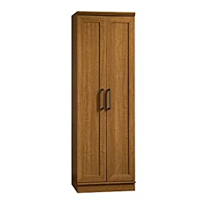 "Assembled Dimensions: 23.25""W x 17""D x 71. 12""H; Interior Dimensions: 22""W x 15.38""D x 65.62""H Four adjustable shelves Framed panel doors Enclosed back panel has cord access Adjustable base levelers Sienna Oak finish"