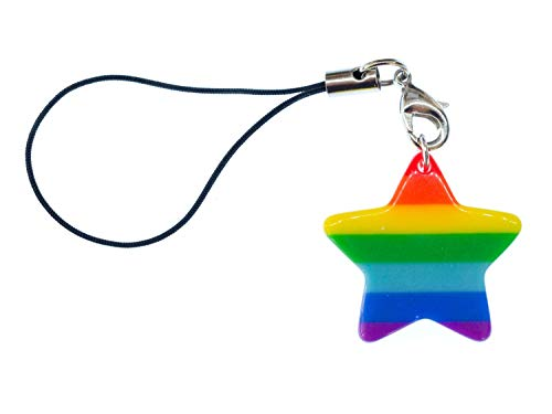 Miniblings Colgante de la suerte del orgullo de la suerte de la estrella del arco iris del teléfono móvil
