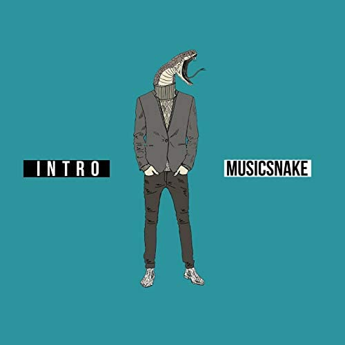 MusicSnake
