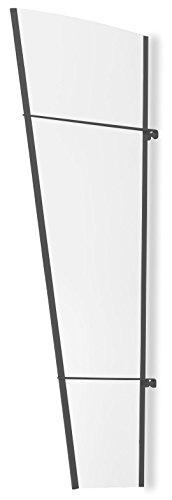 Schulte Seitenteil 167x62 cm Haustür für Vordach Stahl anthrazit rostfrei Überdachung Seitenblende Seitenelement Acrylglas klar LT-Line