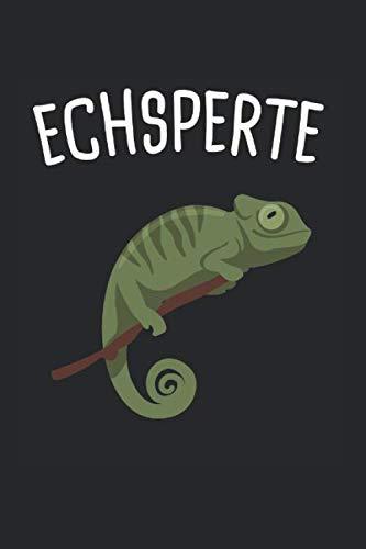 Eidechse Reptil Reptilien Terrarium: Echsperte & Eidechse Notizbuch 6'x9' Reptil Geschenk für Echse & Reptilien