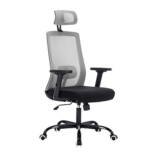 Ergonomic Office Chair, Sidanli Gray Home Office Chair with Headrest Adjustable