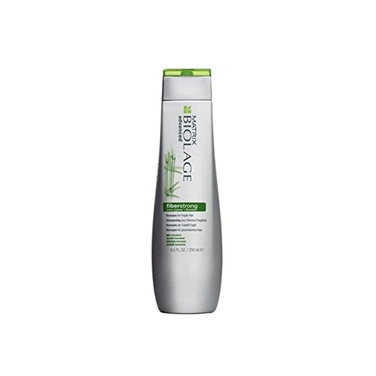 冷淡なシーサイドサーバントマトリックスバイオレイジのシャンプー(250ミリリットル) x2 - Matrix Biolage Fiberstrong Shampoo (250ml) (Pack of 2) [並行輸入品]