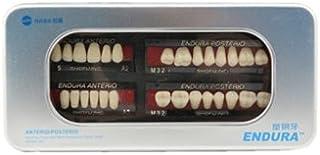 Autek 1 Box / Falsch setzen neue Dental Zahn-Zahn-Protheseng