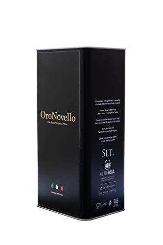 Le Fascine Novello 2020 - Olio Extravergine Di Oliva Appena Spremuto ORO NOVELLO 100 % Italiano Estratto A Freddo In Latta Da 5 Litri 100% Prodotto Da Olive Provenzali (Peranzane)