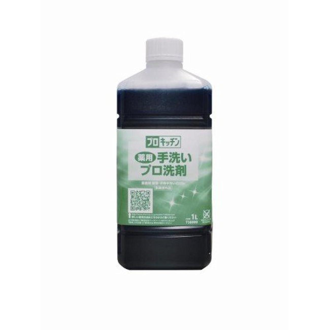 異なる管理します百科事典薬用手洗いプロ洗剤 1L