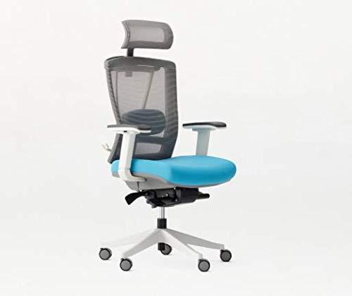 Autonomous Ergo Chair 2 - Premium Ergonomic Office Chair - 7-Way Adjustable Angle Chair (Blue)