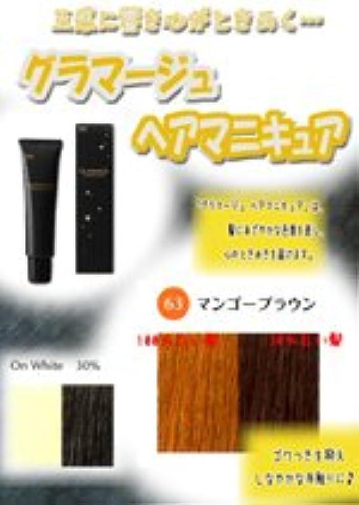 肌殺人ポインタHOYU ホーユー グラマージュ ヘアマニキュア 63マンゴーブラウン 150g 【ブラウン系】