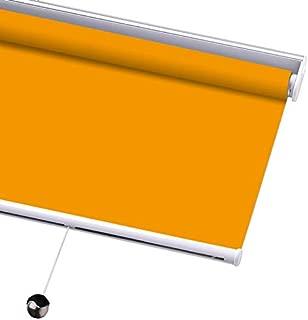 PASSENGER PIGEON Blackout Window Shades, Premium Free-Stop Cordless UV Protection Custom Roller Blinds, 31