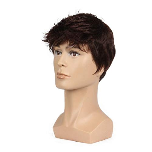 Men Short Brown Wig Handsome Male Daily Costume Synthetic Full Wigs Natural Brown Hair Replacement Wig