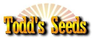 Todd's Seeds - Hard Red Wheatgrass - 5 Lb's - Sprouting Wheat Grass Seeds for Sale - Plant & Grow Wheatgrass, Flour, Grain & Bread - Wheatgrass Juice - Excellent Germination - Sprouting Seeds - Sprouted Wheat