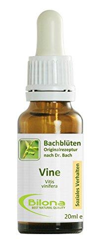 Joy Bachblüten, Essenz Nr. 32: Vine; 20ml Stockbottle