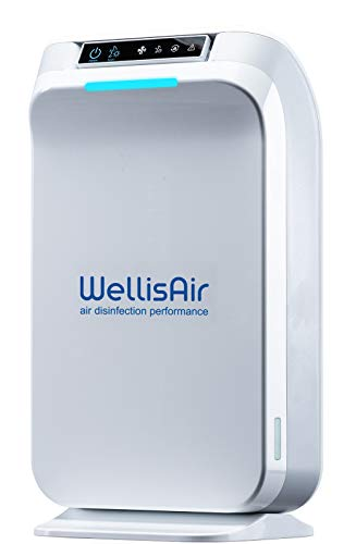 Wellis Air Purifiers for Home Large Room Filter-less, Surface Disinfection from Virus, Bacteria, Fungi, Germs, Allergies, Pets Dander, Pollen, Smoke, Dust, Mold, Odors, White