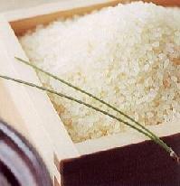 特別栽培米 コシヒカリ 福井産 10キロ×3=30kg入り