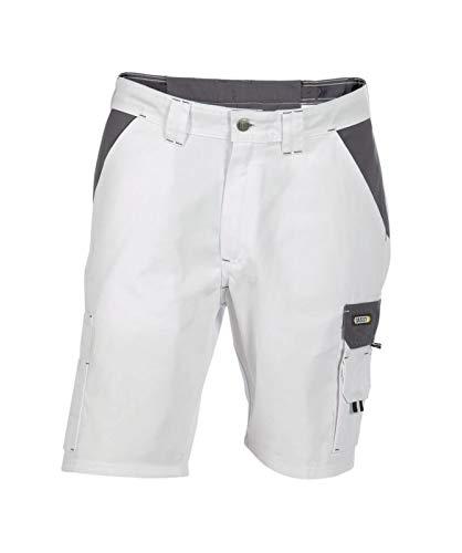 Dassy Roma Arbeitshorts Shorts Arbeitskleidung Shorts für Maler (48)