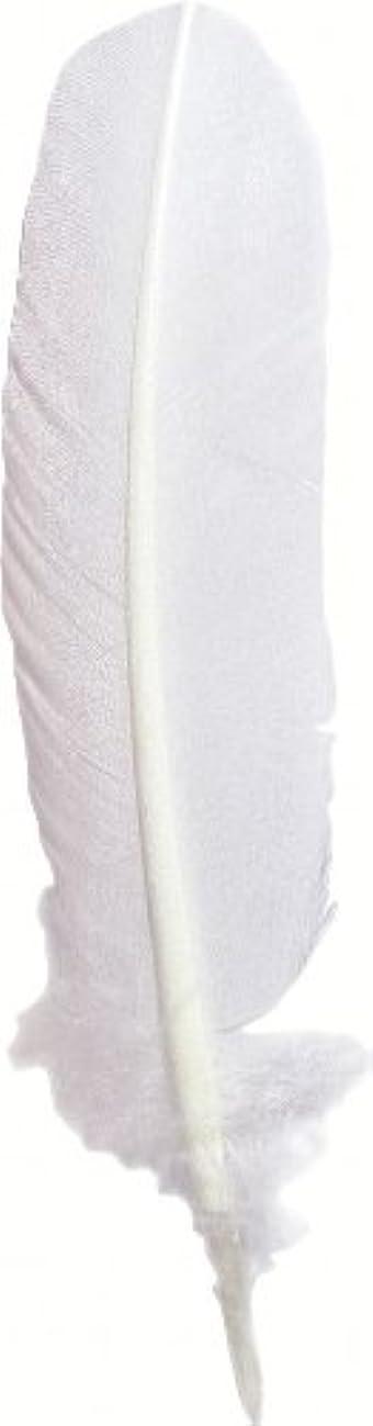 J Herbin Good Quill - White