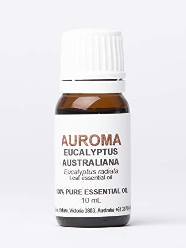 AUROMA ユーカリオーストラリアーナ(ラディアタ種) 10ml