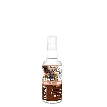 LUCAA+ Nettoyant/Entretien/Dentifrice pour Les Dents des Chiens/Chats 100ml | Soin pour l'Hygiène Dentaire aux Probiotiques | Bio, Vegan & Naturel