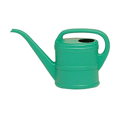 Glooke Selected Innaffiatoio Annaffiatoio in pvc 2 litri spargiacqua contenitore giardinaggio