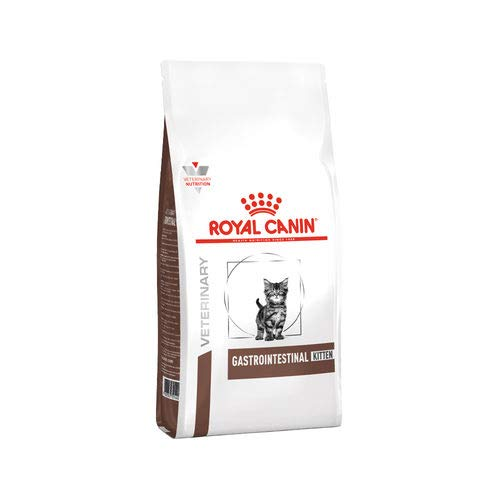 ROYAL CANIN Gastrointestinal Kitten - 2 kg