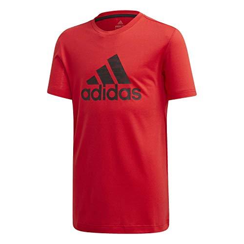 adidas Jungen JB TR Prime Tee T-Shirt, Rojint/Negro, 164 (13/14 años)