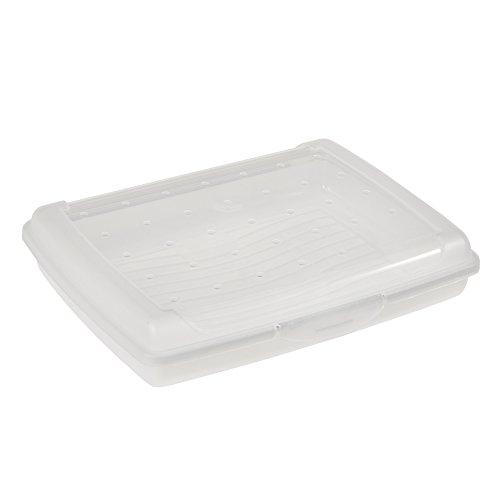 keeeper Boîte Fraîcheur avec Fermeture à Clic, 17 x 13 x 3,5 cm, 500 ml, Luca Mini, Transparent