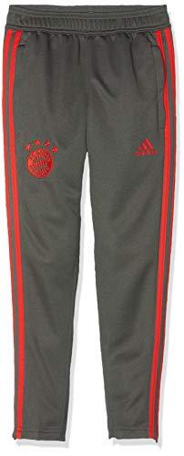 adidas Kinder 18/19 FC Bayern Trainingshose, Utility ivy/Red, 164