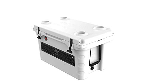 Wet Sounds Stealth SHIVR55 High Output Audio Cooler Speaker System - White (Renewed)