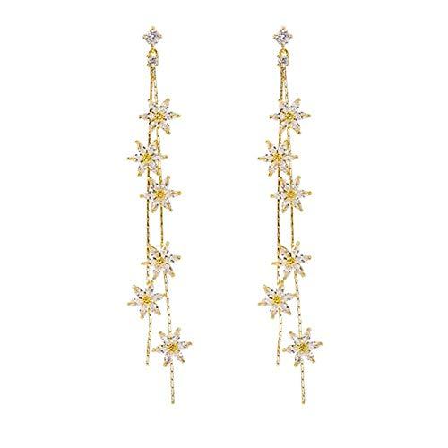 Oorbellen lange hanger vrouwelijke, Vrouwen 925 Sterling Zilver Lange oorbellen, 925 sterling zilver Tassel lange Ear Chain