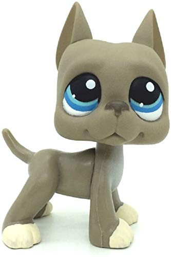N/N Littlest Pet Shop, LPS Toy Grey Great Dane Dog Blue Eyes LPSs Toys Puppy Figures