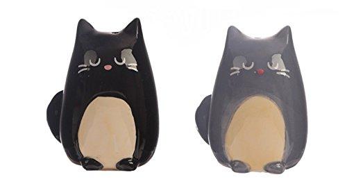 Salz und Pfefferstreuer schwarze und graue Katze