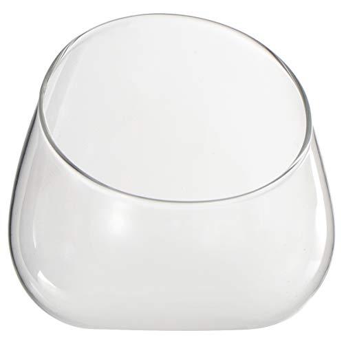 Yardwe - Jarrón de cristal de corte inclinado para terrario o terrario...