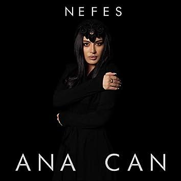 Ana Can