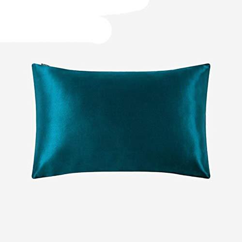 Pure 100 Silk Funda de Almohada Cabello con Cremallera Oculta 19 Momme Color terso para Mujeres Hombres Niños Niñas Lujo Dark Teal, 40x90cm