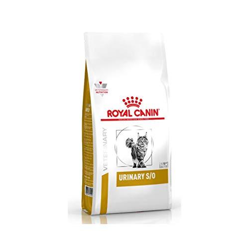 Royal Canin Urinary S/O - Cibo per gatti, dieta veterinaria, 7 kg