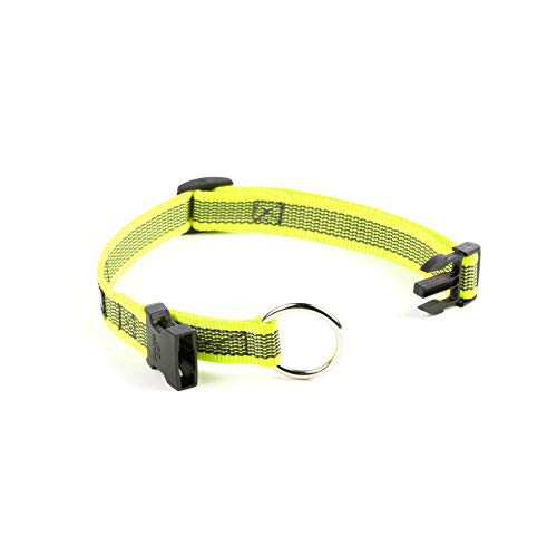 Julius-K9 Color & Gray Collar, 20 mm (27-42 cm), Neon-Gray
