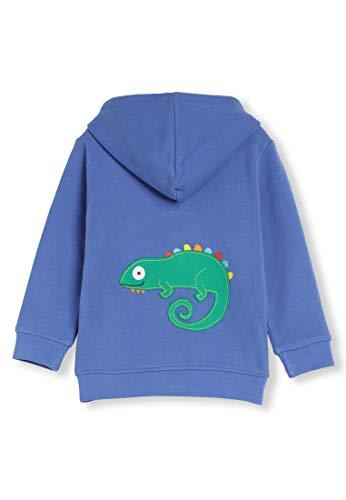 Algodón orgánico - Aplique Animal - Bebé Niña Niños pequeños - Sudadera con Capucha y Cierre - Niñita Niñito (0-4 Años) (6M (3-6 Meses), Lagarto Azul)