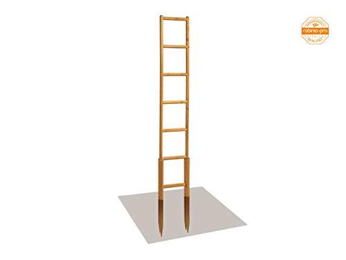 robinia-pro Rankgitter aus Robinienholz - Breite 30 cm, Höhe 171 cm (Robinie, Holz) Rankgerüst, Rankhilfe, Spalier, Rosengitter (Raster 27x27 cm, hoch)