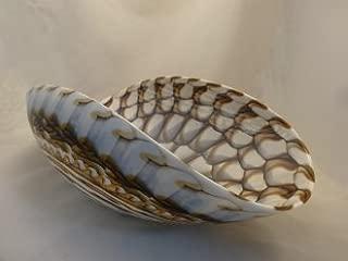 Large Murano Glass Laguna Bowl